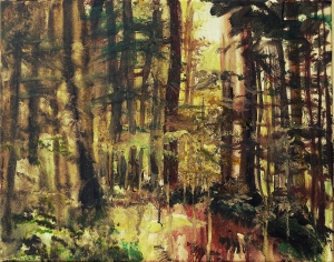 """Sold. 'Glentress Forest 2'. Acrylic on 20x16"""" canvas. Rose Strang 2014"""
