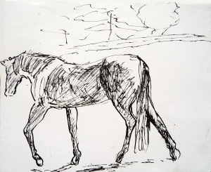 "Horse Sketch 2. Pen and ink on 7x6"" paper"