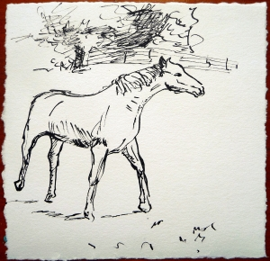 "'Horse Sketch 1'. Pen and ink on 6x6"" paper"