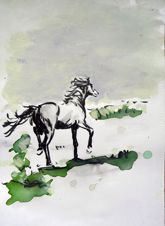 "'Horse Sketch 2013'. Ink and brush on 8x6"" paper"