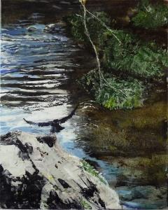 "'Hawk. River Tweed 2'. Acrylic on 20x16"" canvas. Rose Strang 2014"