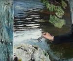 paint 8